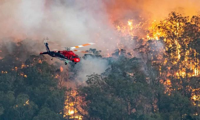 호주에서는 보금자리들이 불타고 있다. 집이 불타고, 대체할 수 없는 숲이 불타고 있다. 빅토리아 주 정부 유인물  및 환경보호국(EPA) 제공