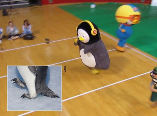 펭수는 ′EBS 아이돌 육상대회(아육대)′ 에서 계주 경기의 마지막 주자로 나서 달리기 실력을 뽐냈다. 실제로 펭귄은 날카로운 발톱으로 얼음을 찍으면서 달린다(작은 사각형). EBS 제공