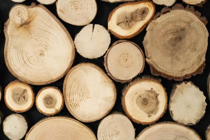 UNIST 연구팀이 폐목재 같은 바이오매스를 분해하는 과정에서 나오는 전자를 이용해 수소를 생산하는 기술을 개발했다. 게티이미지뱅크 제공