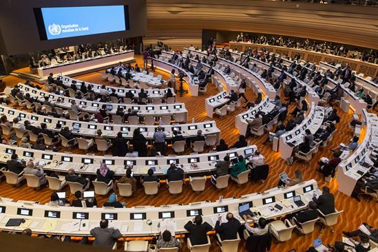스위스 제네바 유엔본부에서 총회가 열렸다. WHO 제공