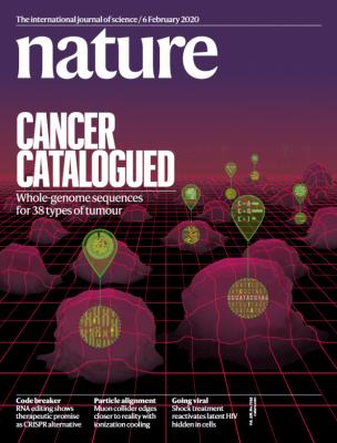 [표지로 읽는 과학] 37개국이 함께 만든 '암 유전체 지도'