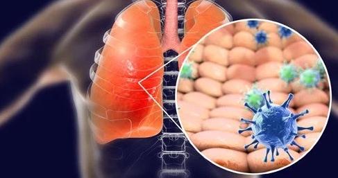 [인류와 질병]신종 감염병의 탄생, 그리고 진화