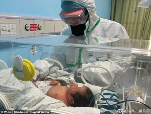 임신부-태아 신종 코로나 수직감염 위험성 아직 모른다