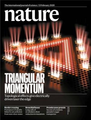 [표지로 읽는 과학]결함이 생겨도 잘 작동하는 반도체 레이저
