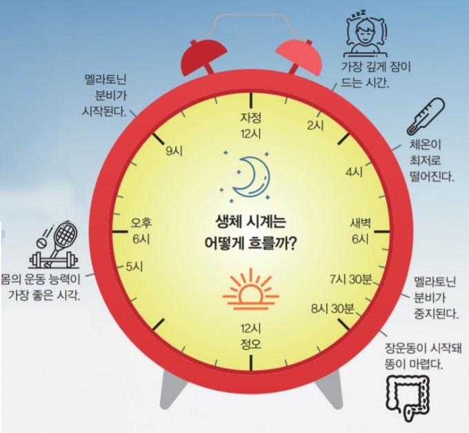 우리 몸은 대략 하루를 주기로 돌아가는 생체 시계의 '하루 주기 리듬'에 따라 상태가 변한다. 해가 지고 난 이후에도 스마트폰이나 게임 화면으로 푸른 빛을 계속 접하게 되면, 생체 시계를 조절하는 시교차상핵이 영향을 받아 생체 시계의 리듬이 흐트러지게 된다. 어린이과학동아DB