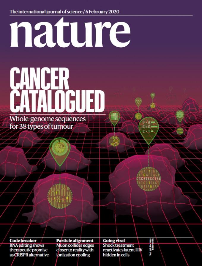 인간 암 유전체 분석 연구결과가 국제학술지 네이처에 발표됐다. ETRI 제공.