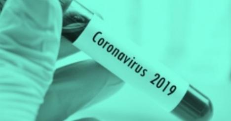 [팩트체크]전 세계 코로나19 치료제·백신 개발 어디까지 왔나