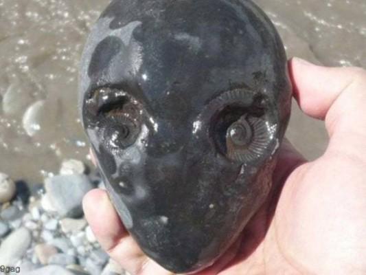 시냇가에서 발견한 외계인 얼굴