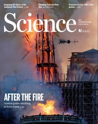 [표지로 읽는 과학] 불타버린 노트르담 대성당, 과학기술로 복원한다