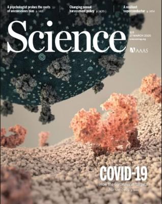 [표지로 읽는 과학] 코로나19 바이러스 구조 밝히다