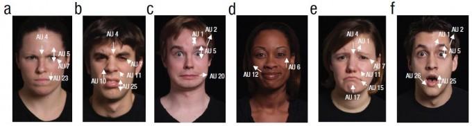 얼굴표정부호화시스템(FACS)으로 분석한 6가지 기본 감정. 왼쪽부터 분노, 혐오, 공포, 기쁨, 슬픔, 놀람이다. AU는 표정단위의 약자로 특정 근육의 움직임을 나타낸다. '대중관심의 심리과학' 제공
