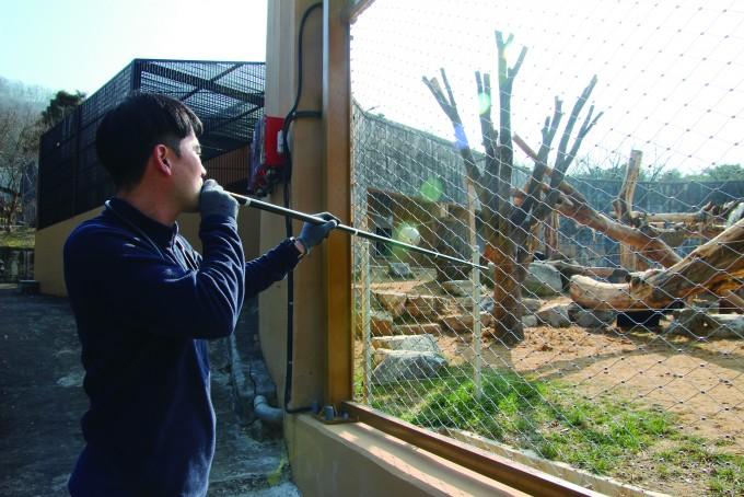 대형 고양잇과 동물사를 옮길 땐 블로우건 마취는 필수다. 사진은 블로우건을 불고 있는 김정호 청주동물원 진료사육팀장. 청주동물원 제공