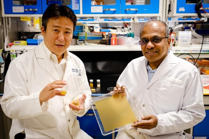 조남준 난양공대 교수(왼쪽)과 수브라 수레시 난양공대 총장이 꽃가루로 만든 다양한 재료를 들고 사진을 찍었다. 난양공대 제공