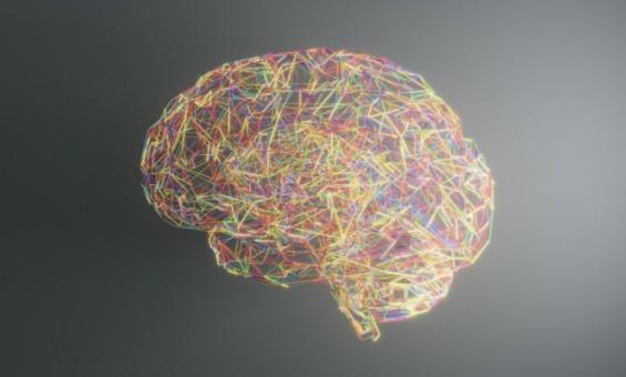 '뇌 신경암호' 생성원리 실마리 찾았다
