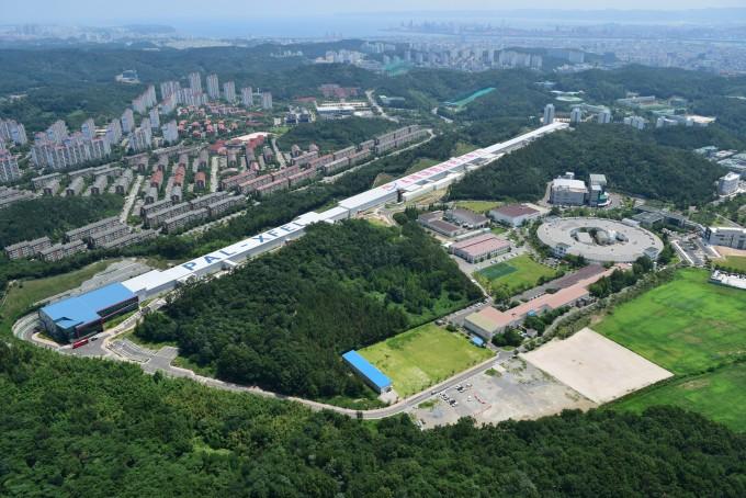 '빛 공장' 방사광가속기 신약·반도체 개발의 '씨앗'
