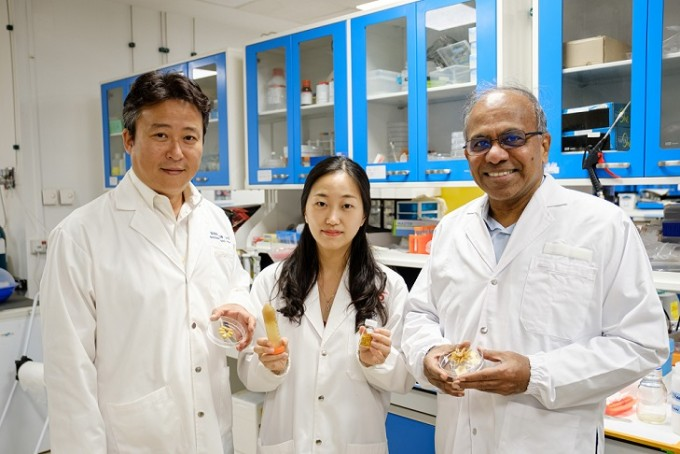 연구를 주도한 연구자들이다. 왼쪽부터 조남준 싱가포르 난양공대 교수와 박수현 연구원, 수브라 수레시 난양공대 총장이다. 난양공대 제공