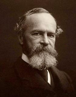 미국 심리학의 아버지 윌리엄 제임스(사진)는 19세기에 이미 감정이 몸의 생리 반응을 일으키는 게 아니라 생리 반응의 해석이 감정임을 간파했다. 심인성 발열 회로가 차단돼 생리 반응을 일으키지 않게 된 쥐는 큰 쥐를 봐도 공포 반응을 보이지 않아 그의 주장을 뒷받침했다. 위키피디아 제공