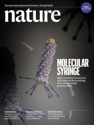 [표지로 읽는 과학]천연 항균물질이 세균 죽이는 방법