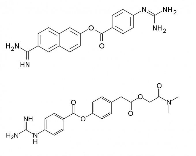 사스코로나바이러스-2의 스파이크 단백질을 자르는 세린 단백질분해효소 TMPRSS2를 억제하는 대표적인 두 화합물이다. 위가 이번에 한국파스퇴르연구소에서 효과를 확인한 나파모스타트 메실산염이고 아래가 캐모스타트 메실산염이다. 위키미디어 제공