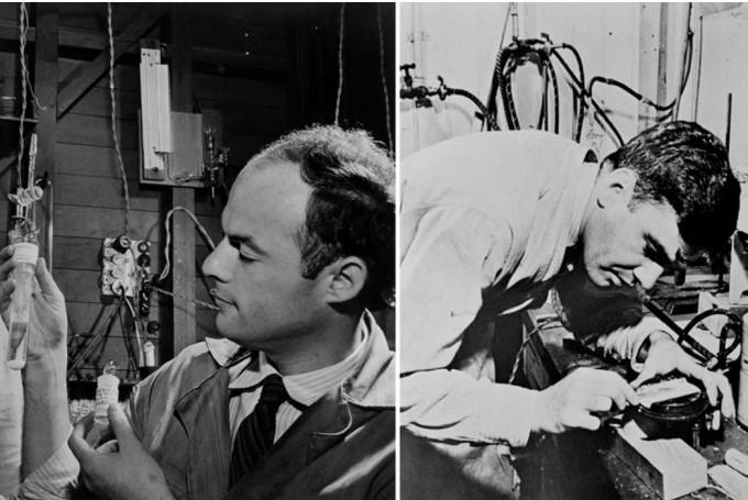 1940년 탄소14를 만든 마틴 캐먼(오른쪽)과 이를 확인한 사무엘 루벤(왼쪽)은 2차 세계대전으로 광합성 연구가 중단된 뒤 전쟁 관련 연구를 하다 캐먼은 스파이 혐의로 연구소에서 쫓겨나고 루벤은 독가스 실험 중 사고로 사망했다. 로렌스버클리국립연구소 제공