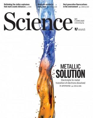 [표지로 읽는 과학] 전해질과 액체 금속의 연결고리 밝혔다