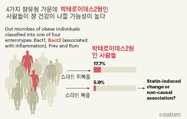 지난 2017년 연구결과에 따르면 네 가지 장유형 가운데 박테로이데스2형(Bact2 enterotype)인 사람들은 장 건강이 나쁠 가능성이 높다. 예를 들어 염증성 장질환 환자의 75% 이상이 박테로이데스2형이다. 최근 분석 결과 비만인 사람에서 박테로이데스2형의 비율이 스타틴을 복용하지 않는 그룹은 17.7%인 반면 복용하는 그룹은 5.9%에 불과했다. 스타틴이 염증성 장질환 증상을 개선하는 효과가 있을지도 모른다는 말이다. 네이처 제공