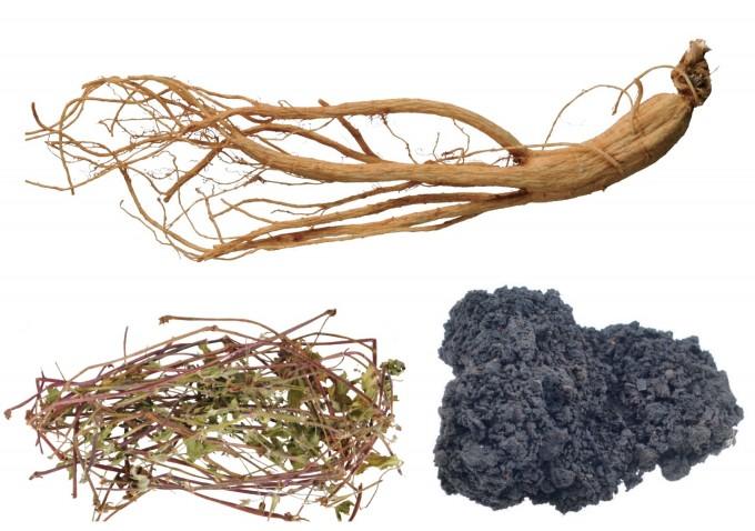 한약재로 쓰이는 인삼과 현초, 건칠(위부터 반시계방향으로)이다. 한국한의학연구원 제공