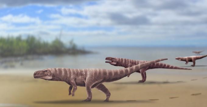 앞발과 꼬리를 들고 두 발로 걸었던 것으로 추정되는 중생대 백악기 전기(1억1000년 전) 원시악어 발자국 화석이 세계 최초로 경남 사천에서 발견됐다. 몸길이 3m의 거대한 크기로 당시 생태계의 최상위 포식자였을 것으로 추정된다. 퀸스랜드대 제공