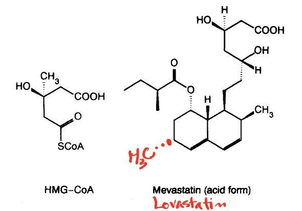 메바스타틴(오른쪽)은 콜레스테롤 생합성의 초기 단계인 HMG-CoA(왼쪽)를 메발로네이트(mevalonate)로 바꾸는 효소의 작용을 억제한다. 메바스타틴의 분자 구조를 보면 오른쪽 위 부분이 HMG-CoA와 매우 비슷해 효소가 더 잘 달라붙는다. 1987년 출시된 최초의 스타틴 의약품 로바스타틴은 메바스타틴 3번 탄소에 붙어있는 수소가 메틸기(-CH3)인 것만이 다르다(빨간색). '지질연구저널' 제공