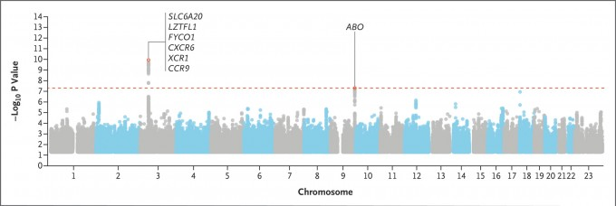 이달 17일 발표된 뉴잉글랜드저널오브메디신의 논문에서는 보다 소규모 메타 GWAS 연구 결과 9q34.2 영역 역시 GWAS에서 상관성의 기준이 되는 P값을 만족시키는 것으로 나타났다. 이 연구로 코로나19 감염과 혈액형이 관련이 있다는 주장이 제기됐다. NEJM 제공