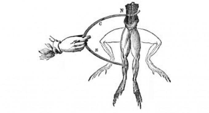 볼로냐 대학의 해부학 교수였던 갈바니(Luigi A. Galvani, 1737-1798)는 개구리의 다리를 절개하다가, 개구리 다리의 근육신경조직을 두 가지 다른 금속 조각들에 접촉시켜 놓으면 개구리의 다리에 경련이 일어난다는 사실을 발견했다.