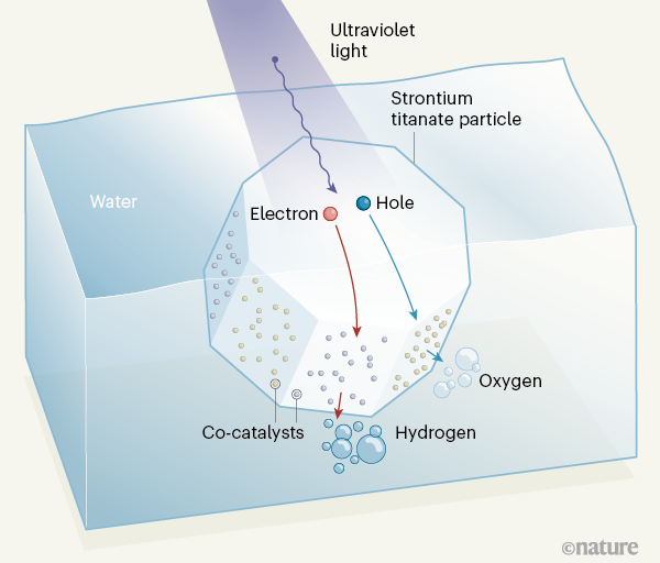 신슈대 도멘 카주나리 교수팀이 주축이 된 일본 연구자들이 개발한 광촉매의 작동 메커니즘을 보여주는 그림이다. 빛(자외선)을 받아 스트론튬 티타나이트 입자 내부에서 만들어진 전자(electron)와 정공(hole)이 각각 입자 표면의 다른 면에 코팅된 두 보조촉매로 이동하면서 물분자가 분해돼 수소와 산소가 생성된다. 네이처 제공