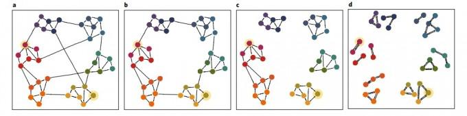 생활 속 거리두기의 여러 유형을 네트워크를 이용해 형상화해 비교했다. a는 아무 거리두기를 하지 않을 때로, 주로 가깝거나 동질적인 특성을 가진 사람이 접촉하는 가운데 가끔 멀리 있거나 관계가 적은 집단과도 접촉을 한다. b는 동질적이거나 가까운 집단으로 접촉을 제한한 경우다. a에 비해 역학적 연결고리가 일부 줄어든다. 이 정도만 해도 바이러스 전파는 크게 주는 것으로 나타났다. c는 대부분 아는 사람끼리만 만나도록 제한한 경우다. 구성원이 모두 서로 알거나 최소한 ′친구의 친구′까지만 만나도록 허용한다. c는 한 번 만났던 사람과만 지속적으로 접촉하도록 허용하는 경우다. 연인이나 돌봄 노동자, 직장의 경우 밀접하게 같이 일하는 사람 등까지만 만남을 허용하는 대신 접촉 수는 제한하지 않는다. 네이처 인간행동 제공