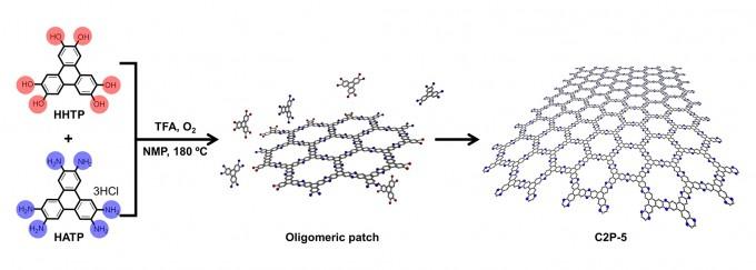 하이드록시기(왼쪽 위)와 아민기(왼쪽 아래)를 도입한 트리페닐렌 분자의 산화 축합반응을 통해서 그래핀처럼 2차원 벌집 구조를 가지는 전도성 고분자를 합성했다. IBS 제공