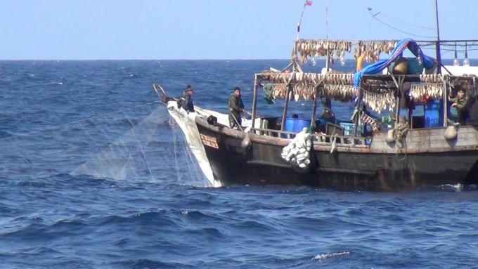 북한의 영세한 오징어잡이배가 러시아 배타적경제수역까지 진출해 오징어를 잡고 있는 모습이다. 길이가 20m가 채 안 되고 오징어를 유인하기 위한 전구도 5~20개 정도밖에 없어 매우 장비가 열악하다. 중국 어선이 북한 동해에 진출해 오징어를 불법적으로 잡기 시작하면서 먼 바다까지 밀려난 것으로 추정된다. 이승호 씨 제공