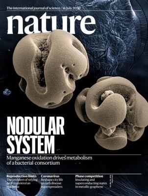 [표지로 읽는 과학] 망간에서 생존 에너지 얻는 미생물
