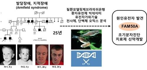 남성에게만 발병하는 지적장애 원인 유전자 찾아냈다