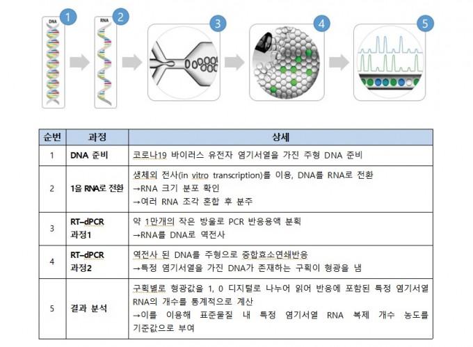 코로나19 바이러스 유전자 표준물질 제조과정을 설명했다. 실시간 디지털 중합효소연쇄반응(RT-dPCR) 기술을 이용해 정밀하게 관심 유전자의 존재를 파악하고 정량화할 수 있다. 한국표준과학연구원 제공