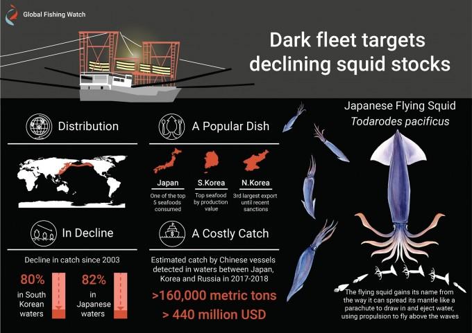 북한 동해 수역의 불법 조업 과정을 정리한 인포그래픽이다. 글로벌어업감시 제공