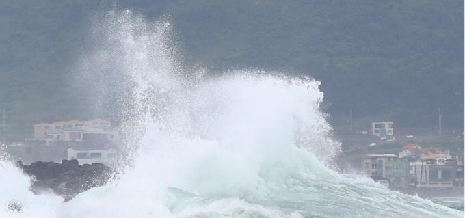 제8호 태풍 바비가 한반도를 향해 북상하는 가운데 25일 오전 제주 서귀포시 안덕면 사계리 해안가에 강한 파도가 몰아치고 있다.  연합뉴스 제공