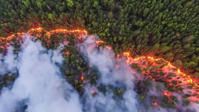 지난 7월 시베리아의 숲을 태우고 있는 산불의 모습이다. 그린피스에 따르면, 러시아에서는 한국의 1.3배 면적에 해당하는 1900만 헥타르가 올해 산불로 탔다. 그린피스 제공