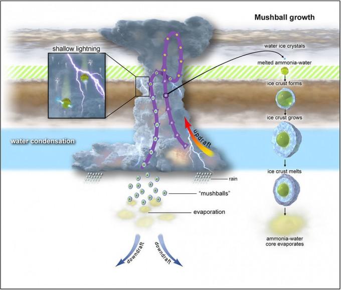 목성 대기에 형성된 버섯 모양의 독특한 구름 구조와 내부에서 두 종류의 번개가 치는 원리를 설명한 그림이다. 고도에 따라 온도와 물의 어는점이 달라 형성되는 액체방울의 성분이 달라지고, 그 결과 각기 다른 성분의 액체가 각기 다른 번개를 형성하는 것으로 추정된다. NASA 제공