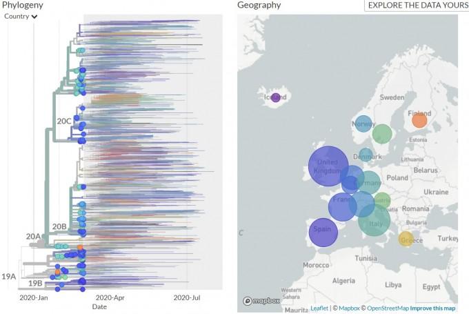 유럽의 초기(3월 이전) 바이러스 유형 분포를 나타내는 계통분류도(왼쪽)과 지역별 분포를 표현한 그림이다. 이미 2월까지 다양한 유형의 바이러스가 퍼져 있음을 알 수 있다. 그림에서 19A와 19B는 중국에서 초기에 유행했던 바이러스 유형이고, 20A, 20B, 20C,는 유럽형이 분화한 것이다. GISAID의 분류법에 따르면 20A는 G, 20B는 GR, 20C는 GH와 대략 일치하고 19A는 O와 V, L이 대략 일치하고 19B는 S와 대략 일치한다. 넥스트스트레인 화면 캡쳐