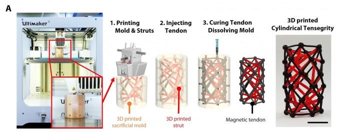 연구팀은 3D 프린터를 활용해 텐세그리티 구조를 구현했다. UNIST 제공