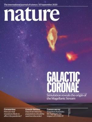 [표지로 읽는 과학] 남반구를 수놓는 마젤란은하의 수수께끼 풀었다