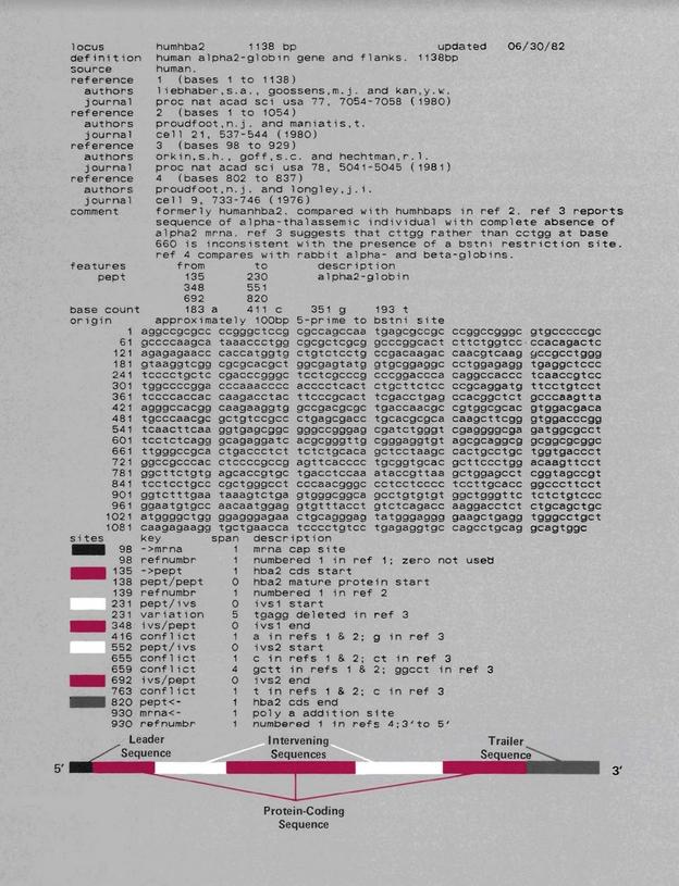 초창기 Genbank 데이터베이스에 저장된 유전자 염기서열의 모습. 로스 앨러모스 국립연구소 제공