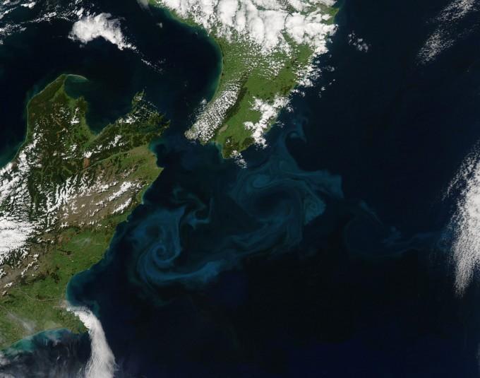 NASA 아쿠아 위성이 촬영한 뉴질랜드의 녹조 모습이다. NASA 제공