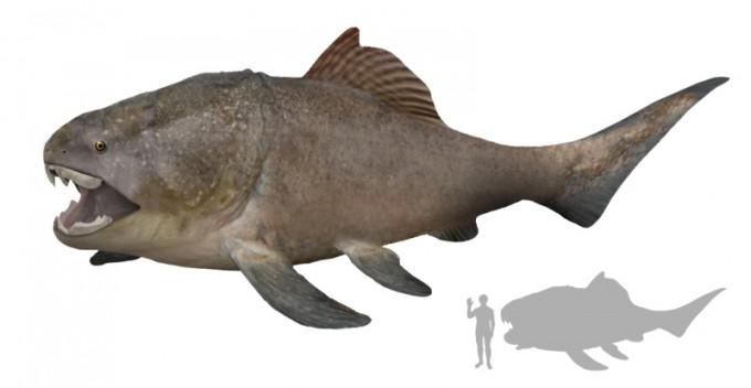 4억년전 바다의 제왕 '판피어류' 대전서 만난다