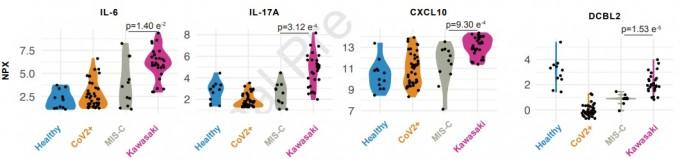 논문의 연구 결과 중 급격한 체내 면역 반응인 사이토카인 폭풍을 유발하는 사이토카인의 체내 농도를 비교한 그래프를 일부 발췌했다. IL-6와 IL-17A, CXCL10 등 왼쪽 세 개 그래프는 사이토카인 폭풍과 관련이 있는데, 가와사키 병에서는 높지만 MIS-C에서는 낮은 것으로 나타났다. 맨 오른쪽 DCBLD2는 혈관 손상을 알려주는 지표(바이오마커) 물질이지만, 역시 가와사키 병에서는 높고 MIS-C에서는 낮은 것으로 나타났다. 셀 논문 캡쳐