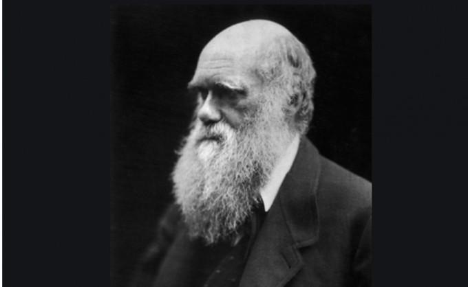만년의 찰스 다윈. 다윈은 비글호 항해를 다녀온 후 무려 18년 이상 은둔하다시피 하며, 진화론의 여러 이론을 다듬어갔다.위키피디아 제공